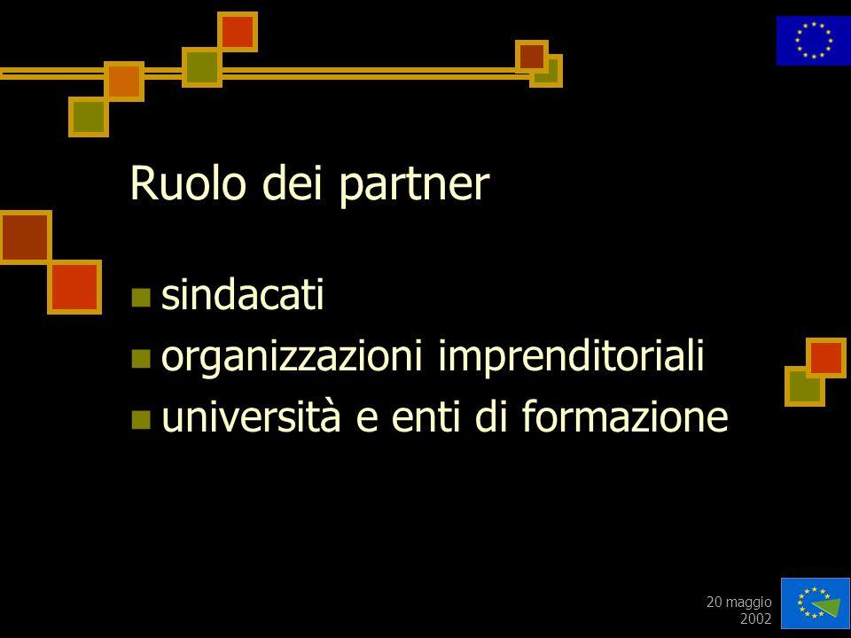 20 maggio 2002 Ruolo dei partner sindacati organizzazioni imprenditoriali università e enti di formazione