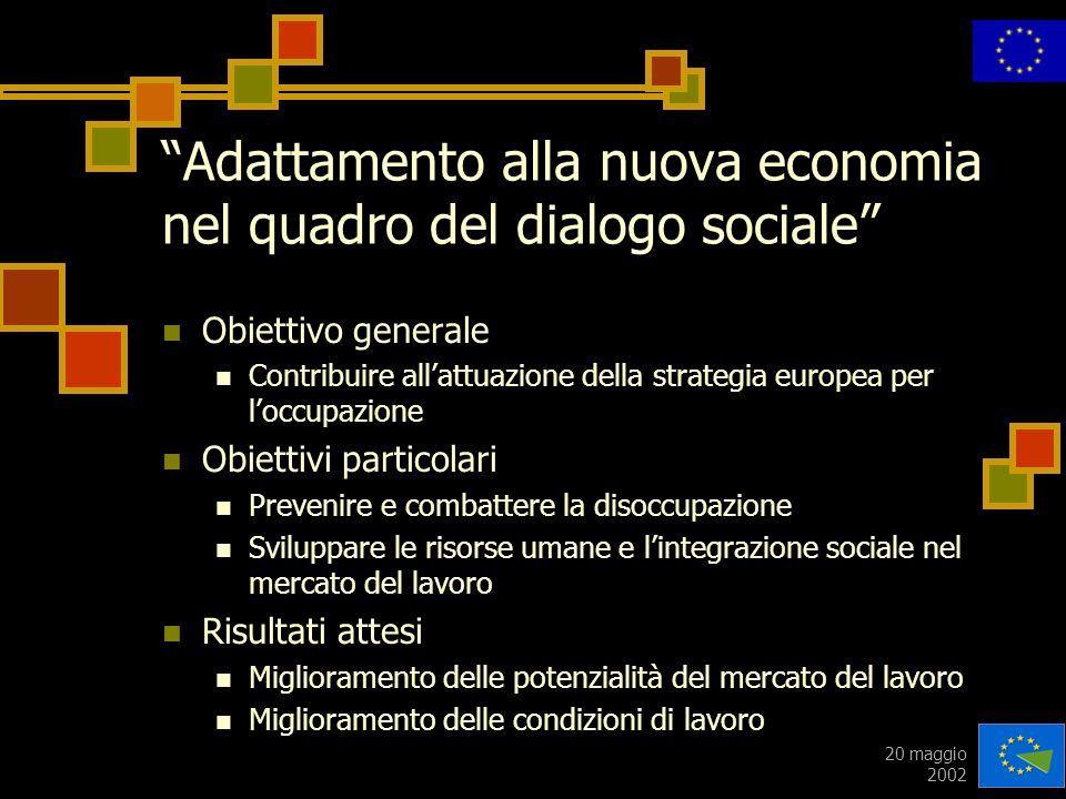 20 maggio 2002 Adattamento alla nuova economia nel quadro del dialogo sociale Obiettivo generale Contribuire allattuazione della strategia europea per