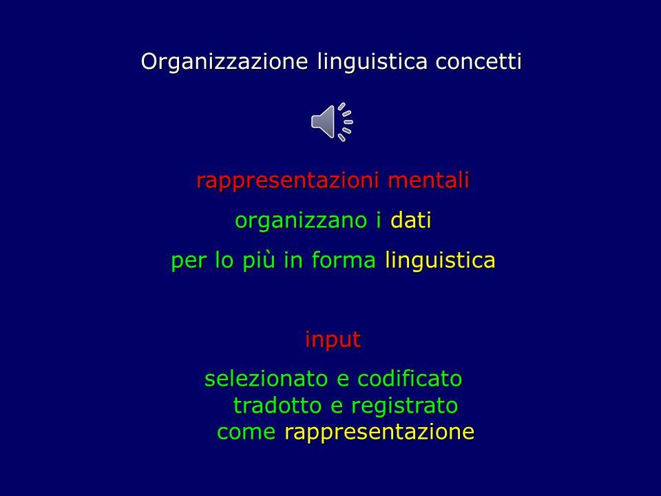 Organizzazione linguistica concetti rappresentazioni mentali organizzano i dati per lo più in forma linguistica input selezionato e codificato tradotto e registrato come rappresentazione