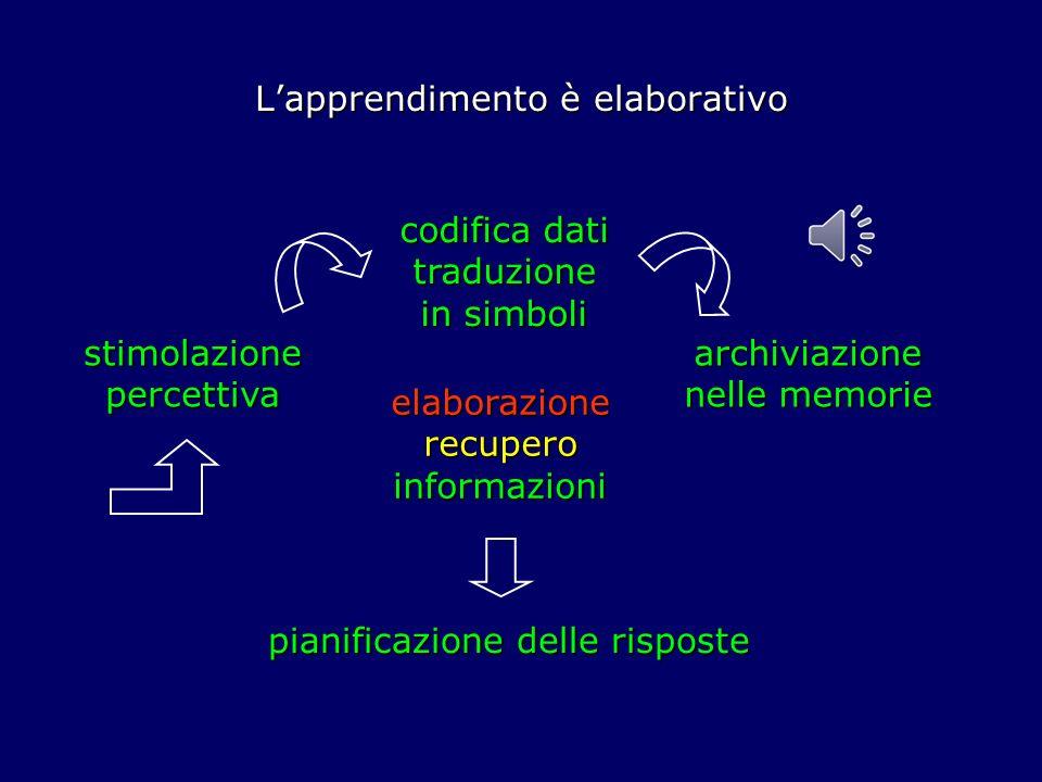 Lapprendimento è elaborativo pianificazione delle risposte stimolazione percettiva codifica dati traduzione in simboli archiviazione nelle memorie elaborazione recupero informazioni