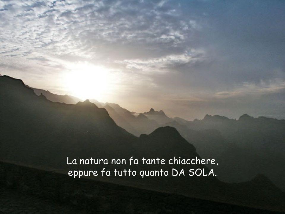 La natura non fa tante chiacchere, eppure fa tutto quanto DA SOLA.
