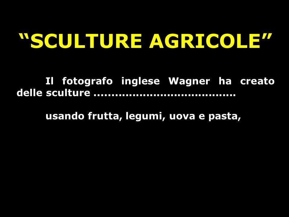 SCULTURE AGRICOLE Il fotografo inglese Wagner ha creato delle sculture......................................... usando frutta, legumi, uova e pasta,