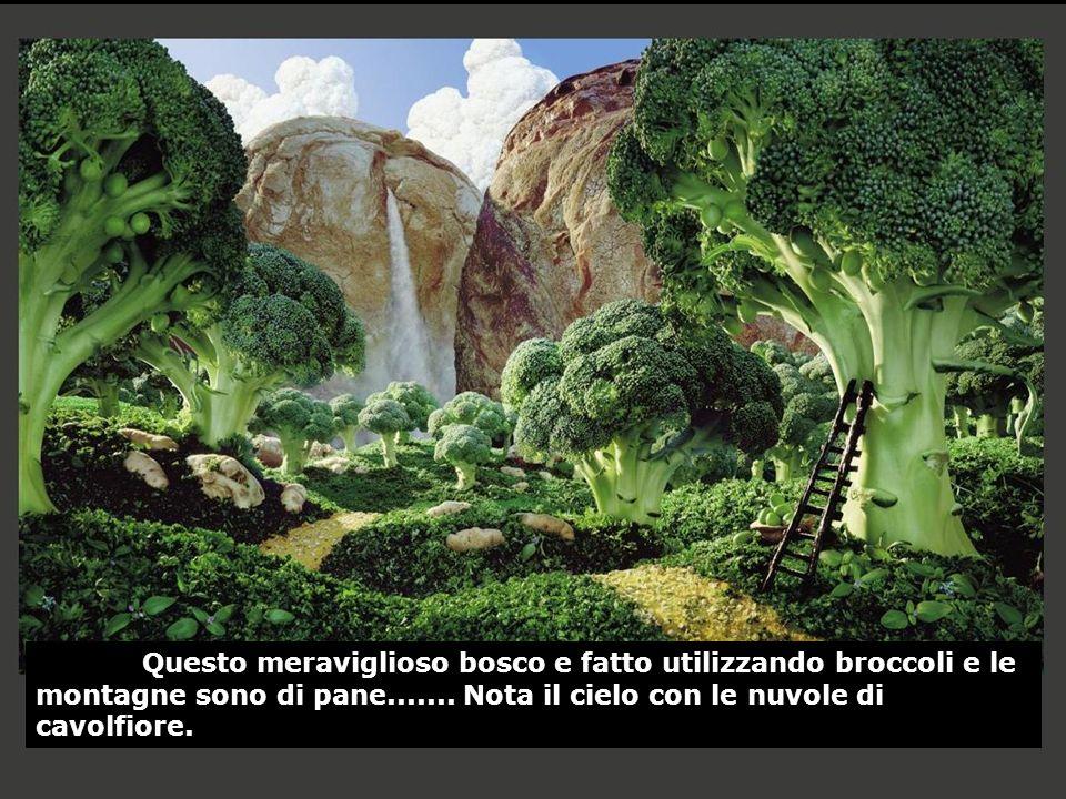Questo meraviglioso bosco e fatto utilizzando broccoli e le montagne sono di pane....... Nota il cielo con le nuvole di cavolfiore.