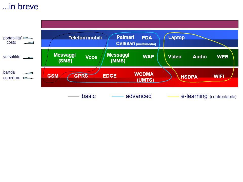 GSM HSDPA WiFi GPRS WCDMA (UMTS) WEBAudioVideoWAP Messaggi (SMS) Palmari Telefoni mobili Laptop EDGE Voce Messaggi (MMS) PDA …in breve basicadvancede-