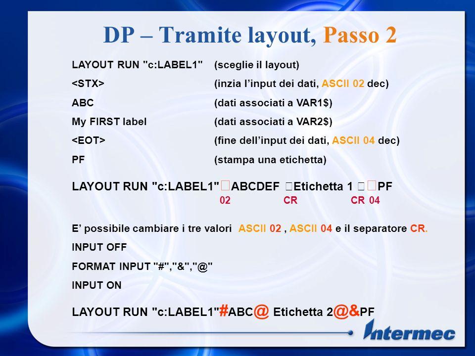 DP – Tramite layout LAYOUT INPUT LABEL1 - Inizia a memorizzare il layout su file LAYOUT END - termina la memorizzazione del layout Le variabili hanno