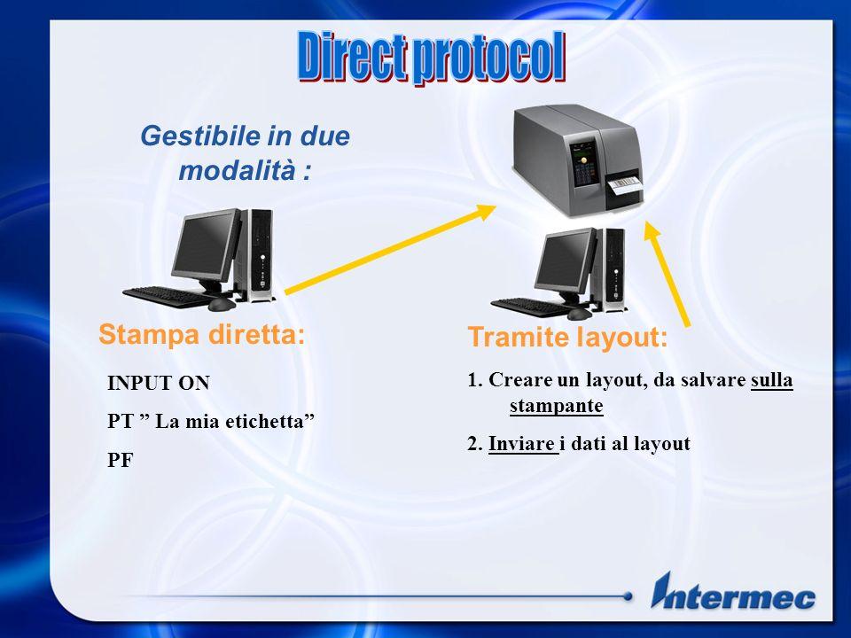 INPUT ON PT La mia etichetta PF Stampa diretta: Tramite layout: 1.