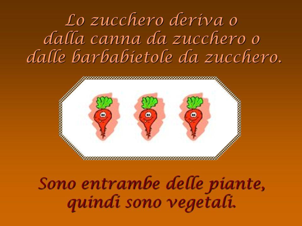 semi = vegetali Il cioccolato deriva dai semi del cacao