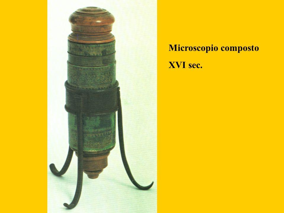 Microscopio composto XVI sec.