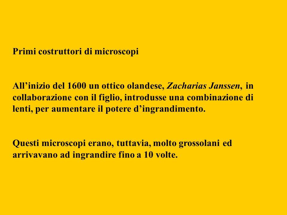 Primi costruttori di microscopi Allinizio del 1600 un ottico olandese, Zacharias Janssen, in collaborazione con il figlio, introdusse una combinazione
