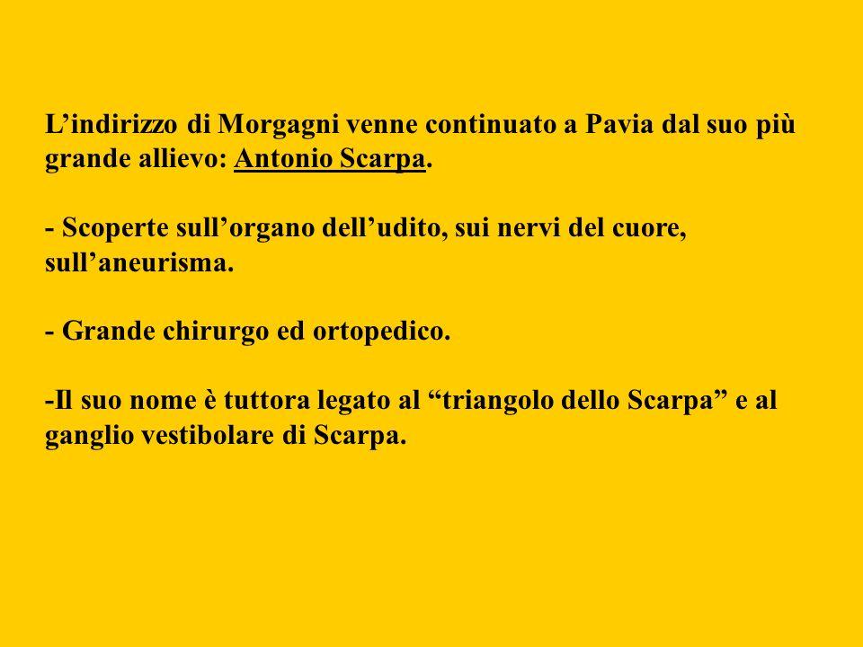 Lindirizzo di Morgagni venne continuato a Pavia dal suo più grande allievo: Antonio Scarpa. - Scoperte sullorgano delludito, sui nervi del cuore, sull