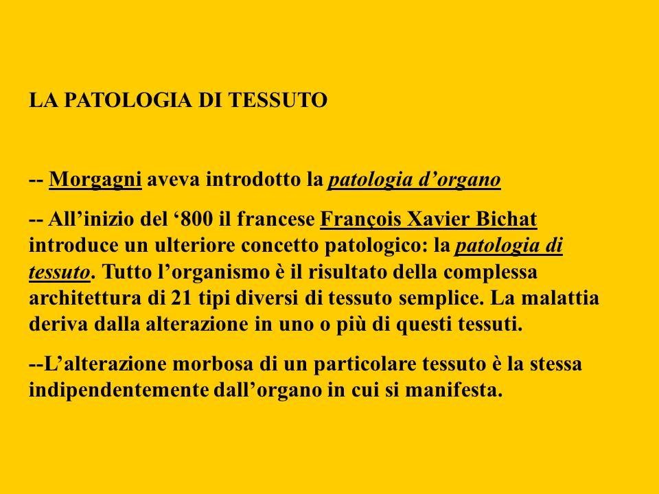 LA PATOLOGIA DI TESSUTO -- Morgagni aveva introdotto la patologia dorgano -- Allinizio del 800 il francese François Xavier Bichat introduce un ulterio