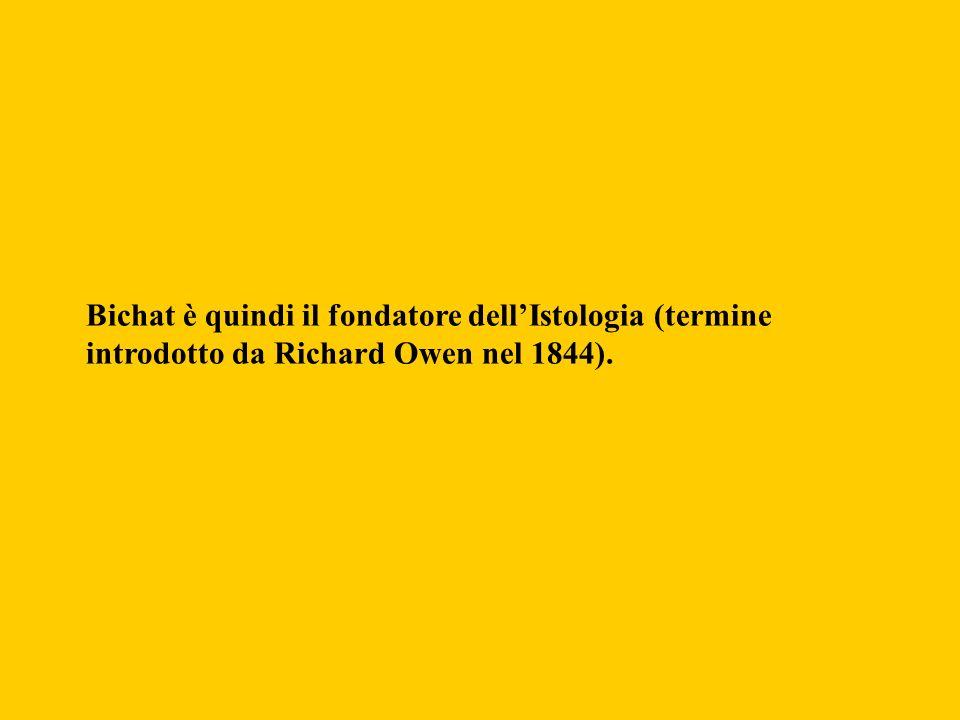 Bichat è quindi il fondatore dellIstologia (termine introdotto da Richard Owen nel 1844).