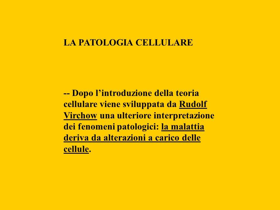 LA PATOLOGIA CELLULARE -- Dopo lintroduzione della teoria cellulare viene sviluppata da Rudolf Virchow una ulteriore interpretazione dei fenomeni pato