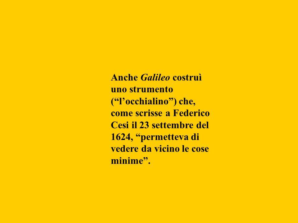 Anche Galileo costruì uno strumento (locchialino) che, come scrisse a Federico Cesi il 23 settembre del 1624, permetteva di vedere da vicino le cose m