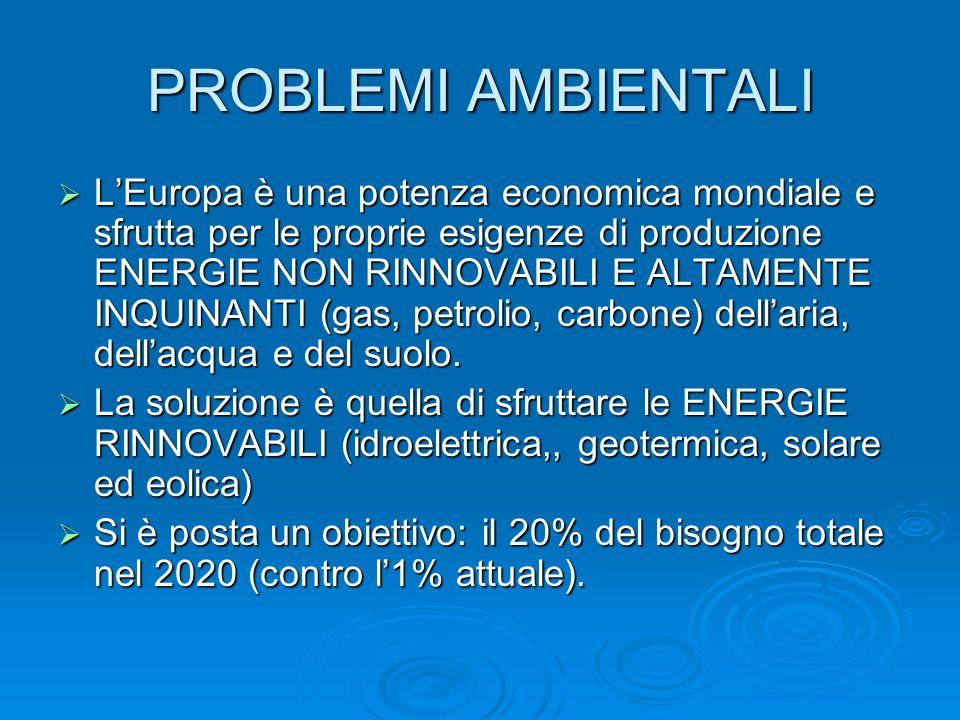 PROBLEMI AMBIENTALI LEuropa è una potenza economica mondiale e sfrutta per le proprie esigenze di produzione ENERGIE NON RINNOVABILI E ALTAMENTE INQUI