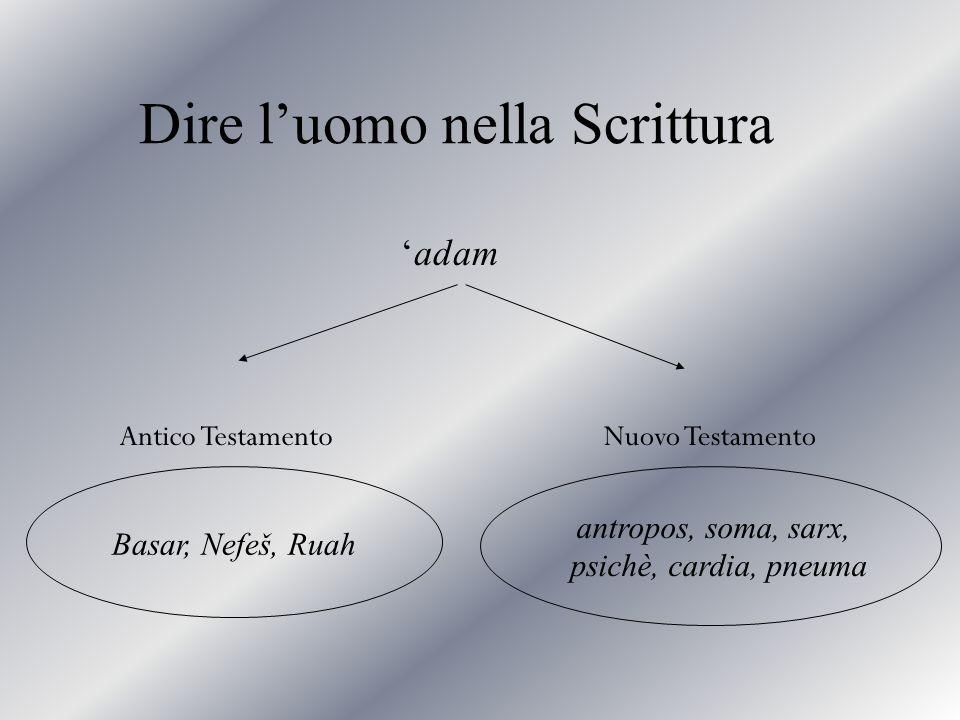 Dire luomo nella Scrittura antropos, soma, sarx, psichè, cardia, pneuma Basar, Nefeš, Ruah adam Antico TestamentoNuovo Testamento