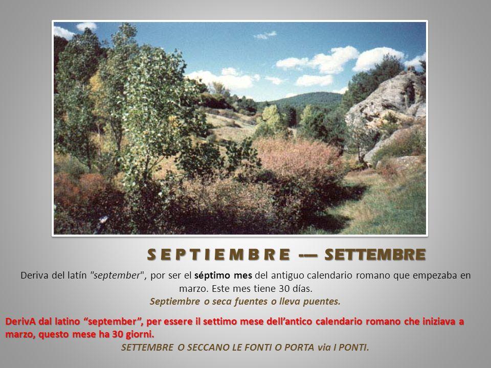 Del latín augustus , en honor al emperador Augusto.