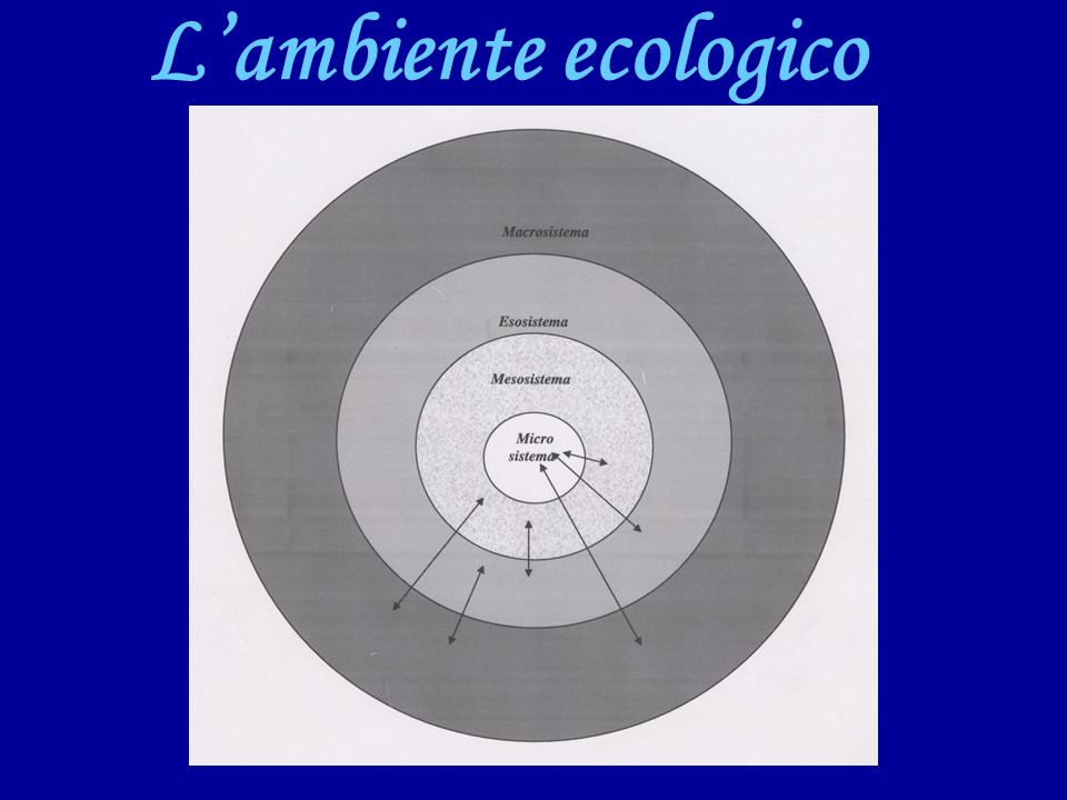 Lambiente ecologico