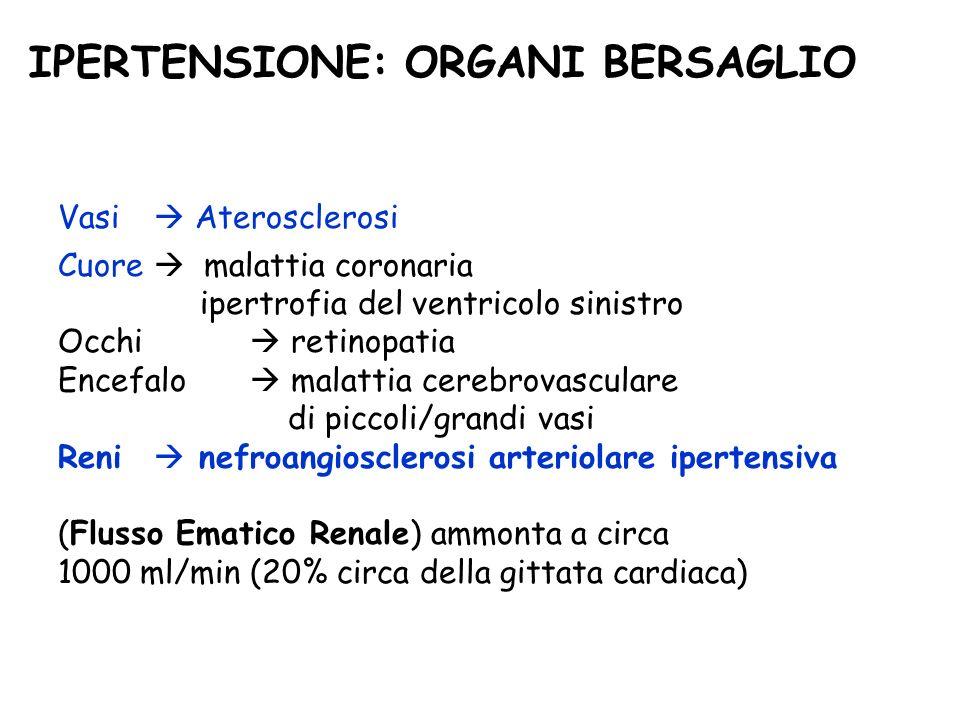 IPERTENSIONE: ORGANI BERSAGLIO Cuore malattia coronaria ipertrofia del ventricolo sinistro Occhi retinopatia Encefalo malattia cerebrovasculare di piccoli/grandi vasi Reni nefroangiosclerosi arteriolare ipertensiva (Flusso Ematico Renale) ammonta a circa 1000 ml/min (20% circa della gittata cardiaca) Vasi Aterosclerosi