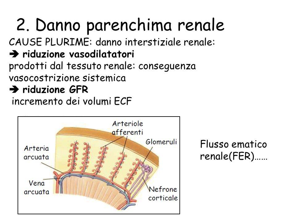 CAUSE PLURIME: danno interstiziale renale: riduzione vasodilatatori prodotti dal tessuto renale: conseguenza vasocostrizione sistemica riduzione GFR incremento dei volumi ECF 2.