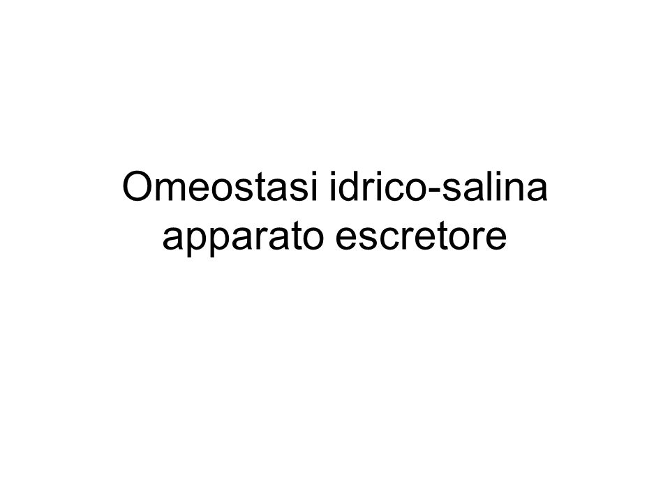 Omeostasi idrico-salina apparato escretore