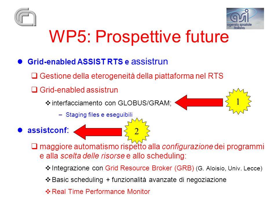 WP5: Prospettive future Grid-enabled ASSIST RTS e assistrun Gestione della eterogeneità della piattaforma nel RTS Grid-enabled assistrun interfacciame