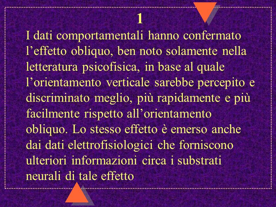 1 I dati comportamentali hanno confermato leffetto obliquo, ben noto solamente nella letteratura psicofisica, in base al quale lorientamento verticale