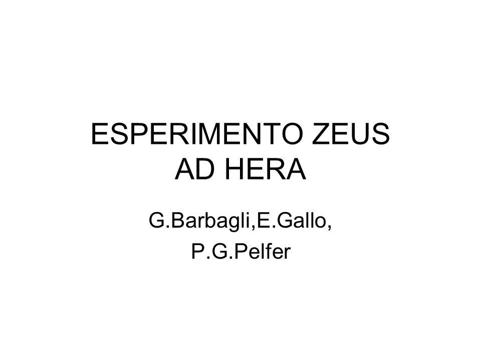 ESPERIMENTO ZEUS AD HERA G.Barbagli,E.Gallo, P.G.Pelfer