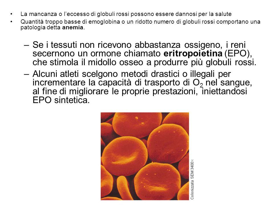 La mancanza o leccesso di globuli rossi possono essere dannosi per la salute Quantità troppo basse di emoglobina o un ridotto numero di globuli rossi