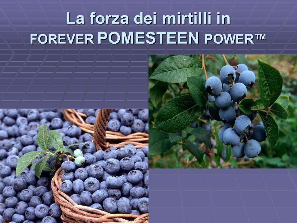 La forza dei mirtilli in FOREVER POMESTEEN POWER