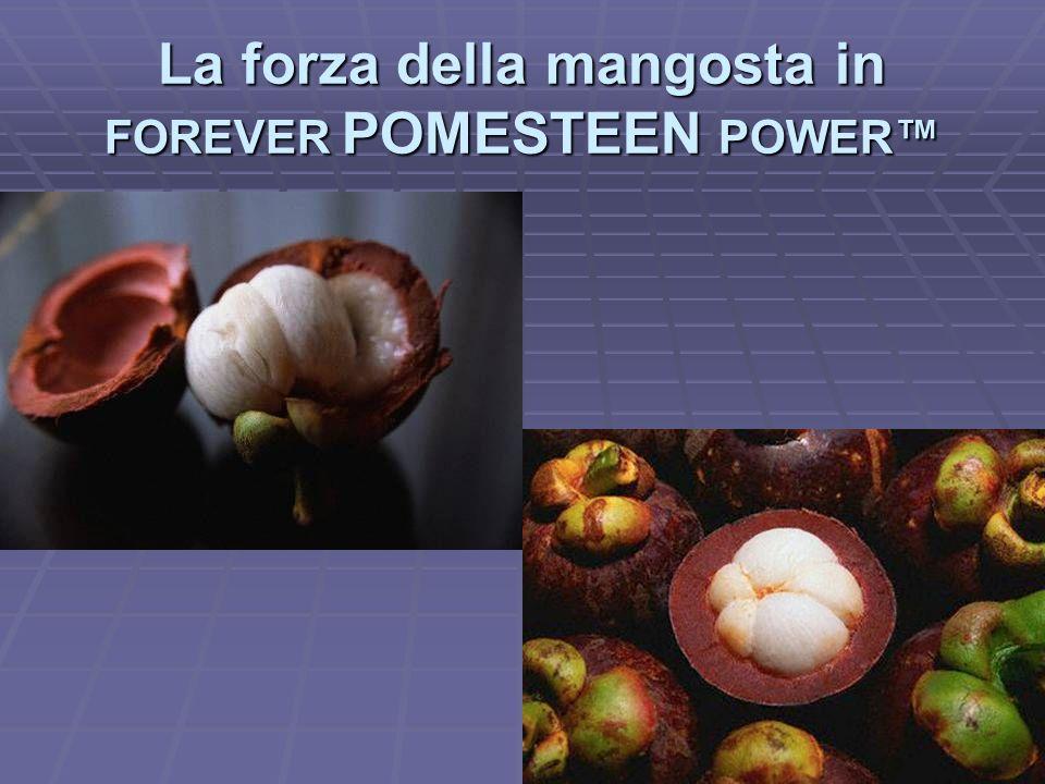 La forza della mangosta in FOREVER POMESTEEN POWER