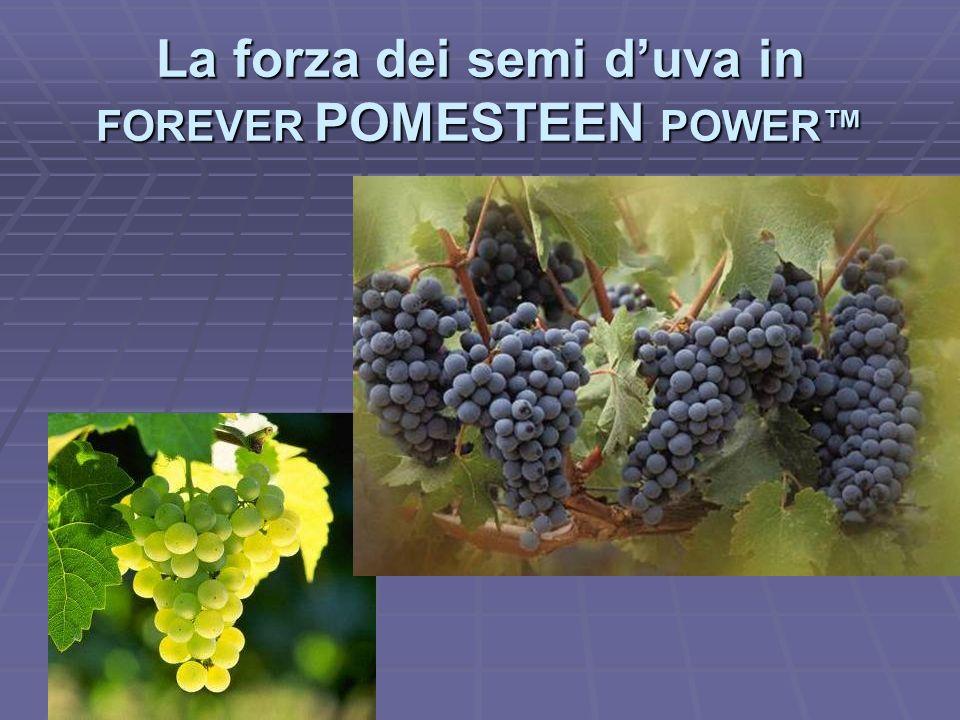 La forza dei semi duva in FOREVER POMESTEEN POWER