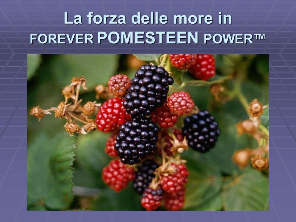 La forza delle more in FOREVER POMESTEEN POWER