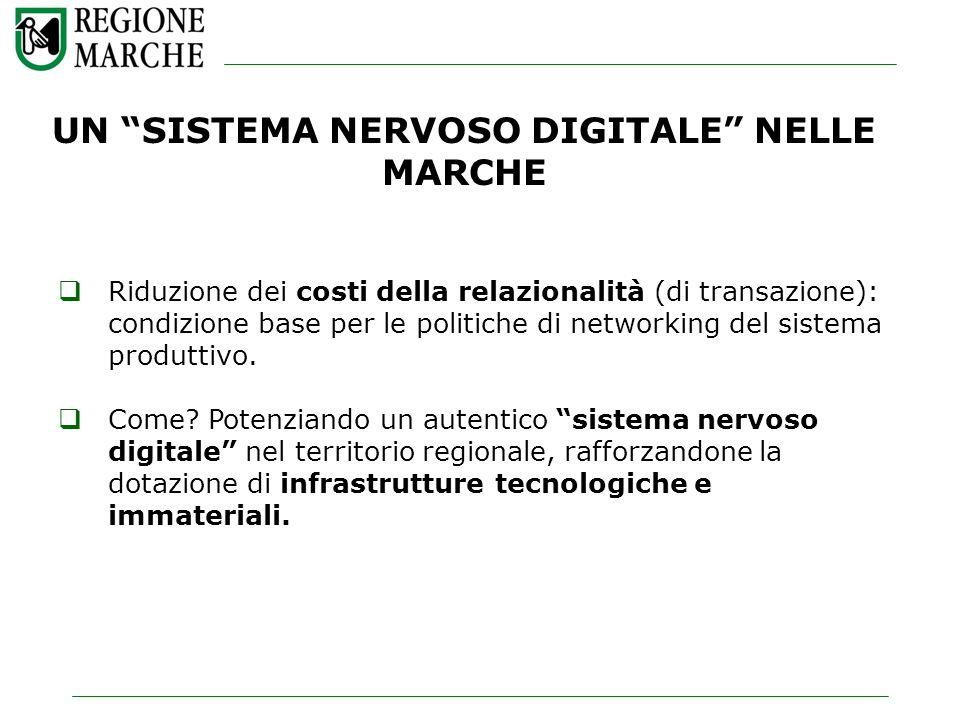 UN SISTEMA NERVOSO DIGITALE NELLE MARCHE Riduzione dei costi della relazionalità (di transazione): condizione base per le politiche di networking del sistema produttivo.