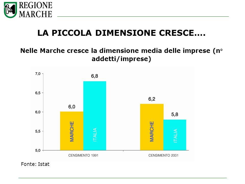 LA PICCOLA DIMENSIONE CRESCE…. Nelle Marche cresce la dimensione media delle imprese (n° addetti/imprese) Fonte: Istat