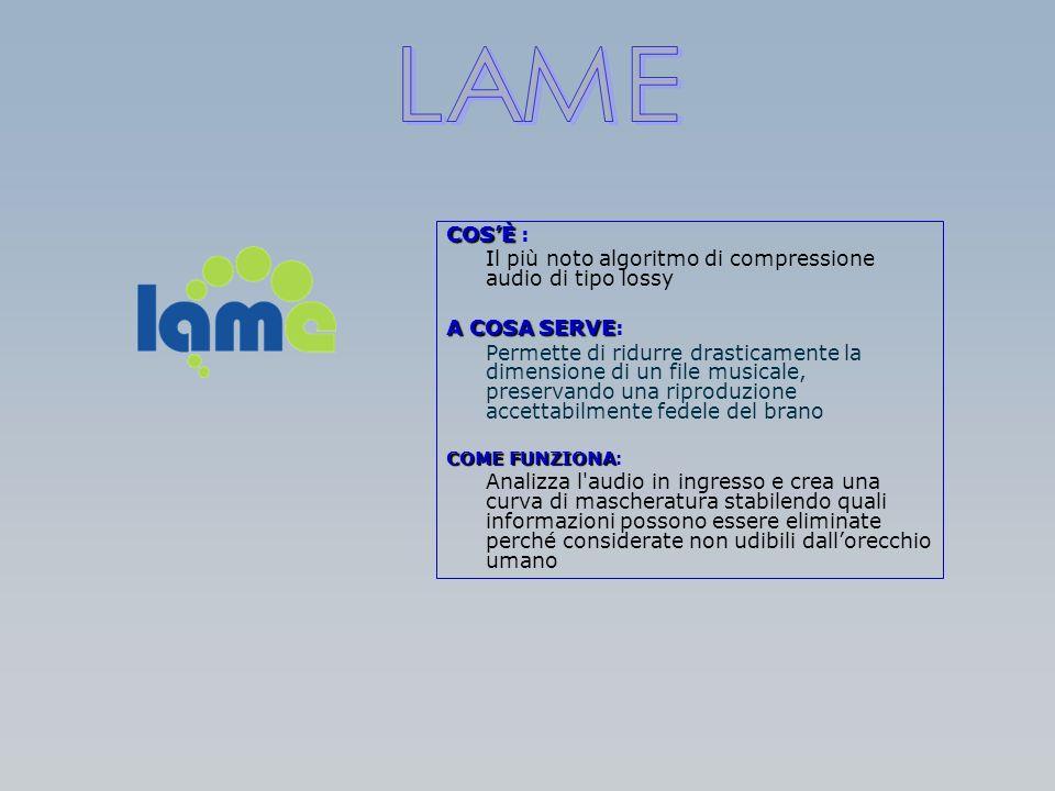 COSÈ COSÈ : Il più noto algoritmo di compressione audio di tipo lossy A COSA SERVE A COSA SERVE: Permette di ridurre drasticamente la dimensione di un