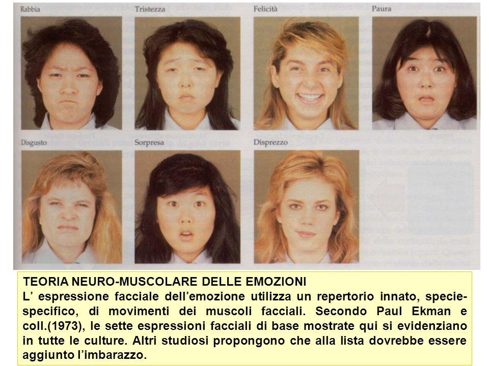 TEORIA NEURO-MUSCOLARE DELLE EMOZIONI L espressione facciale dellemozione utilizza un repertorio innato, specie- specifico, di movimenti dei muscoli f