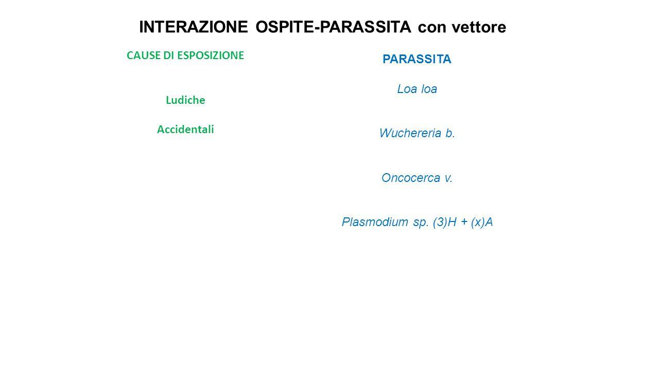 INTERAZIONE OSPITE-PARASSITA con vettore CAUSE DI ESPOSIZIONE Ludiche Accidentali PARASSITA Loa loa Wuchereria b. Oncocerca v. Plasmodium sp. (3)H + (