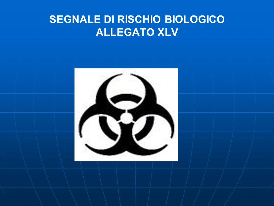 III° FASE VALUTATIVA - - ACQUISIZIONE DATI RELATIVI ALLA ELABORAZIONE STATISTICA DEGLI INFORTUNI A POTENZIALE RISCHIO BIOLOGICO INDAGINE CONOSCITIVA INFORTUNIO