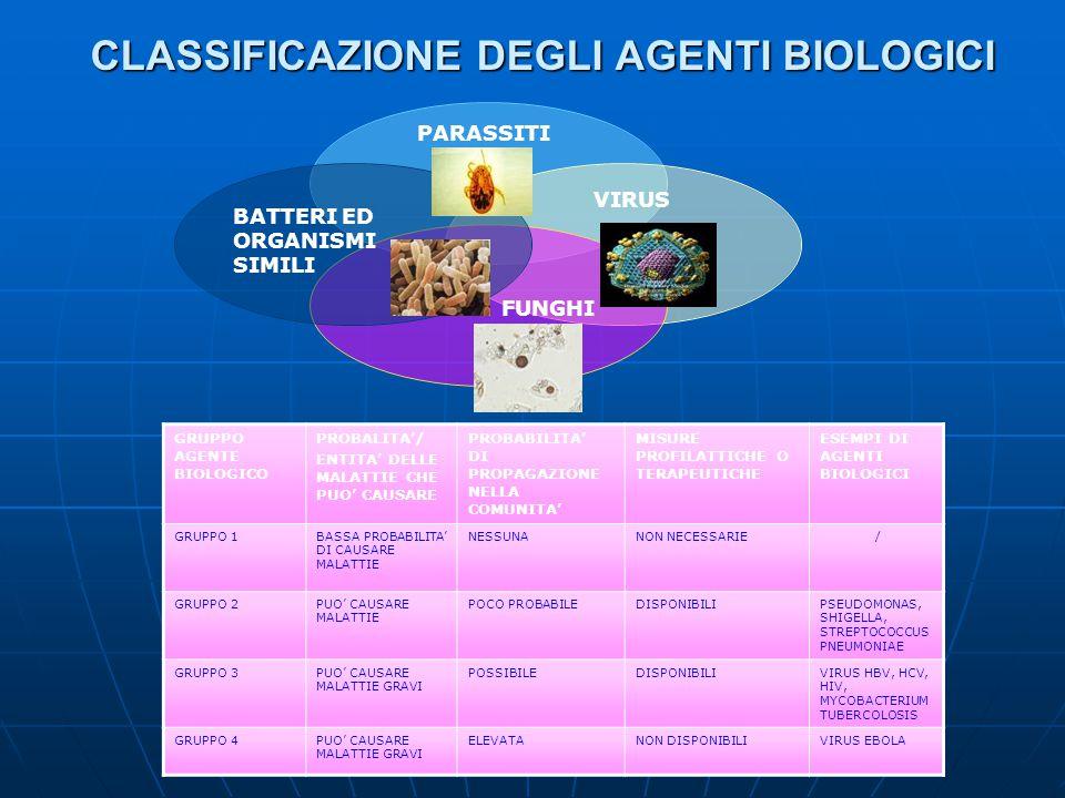 CLASSIFICAZIONE DEGLI AGENTI BIOLOGICI BATTERI ED ORGANISMI SIMILI VIRUS PARASSITI FUNGHI GRUPPO AGENTE BIOLOGICO PROBALITA/ ENTITA DELLE MALATTIE CHE