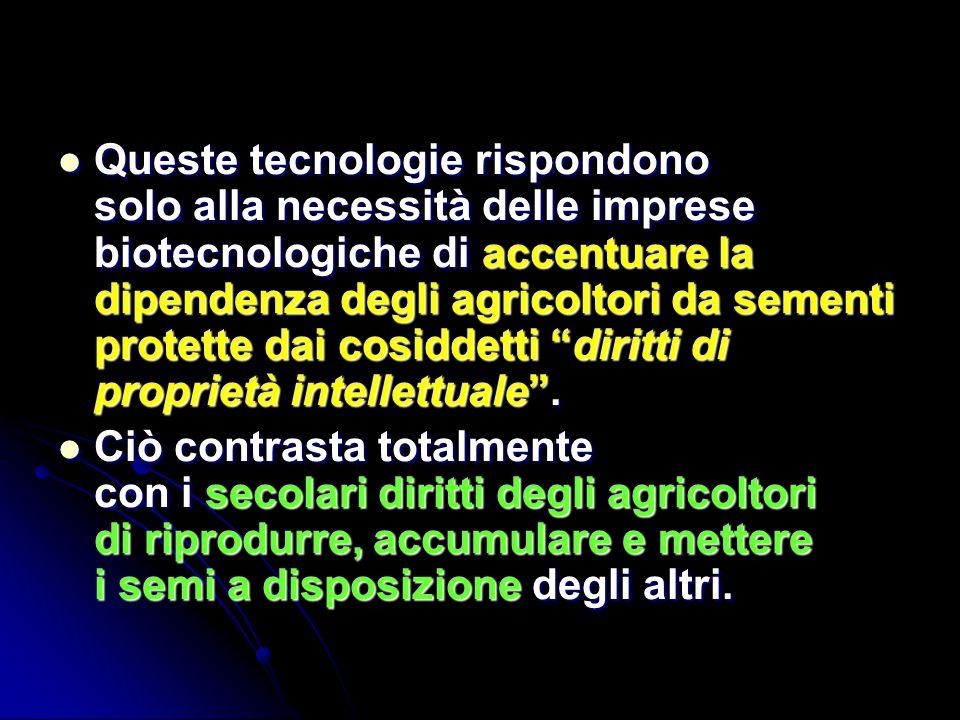 Queste tecnologie rispondono solo alla necessità delle imprese biotecnologiche di accentuare la dipendenza degli agricoltori da sementi protette dai c