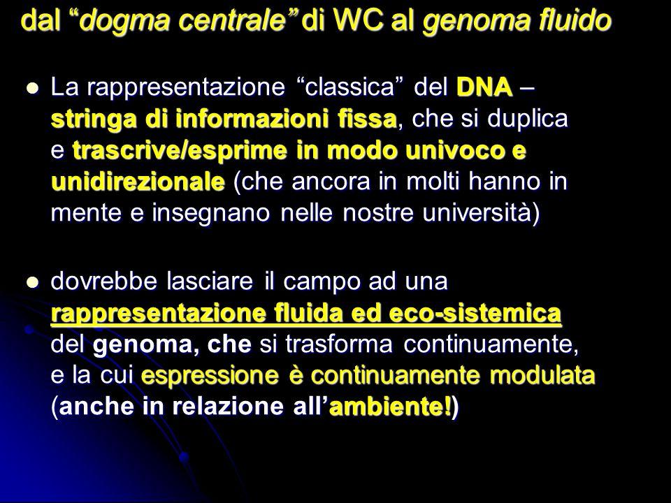 La rappresentazione classica del DNA – stringa di informazioni fissa, che si duplica e trascrive/esprime in modo univoco e unidirezionale (che ancora