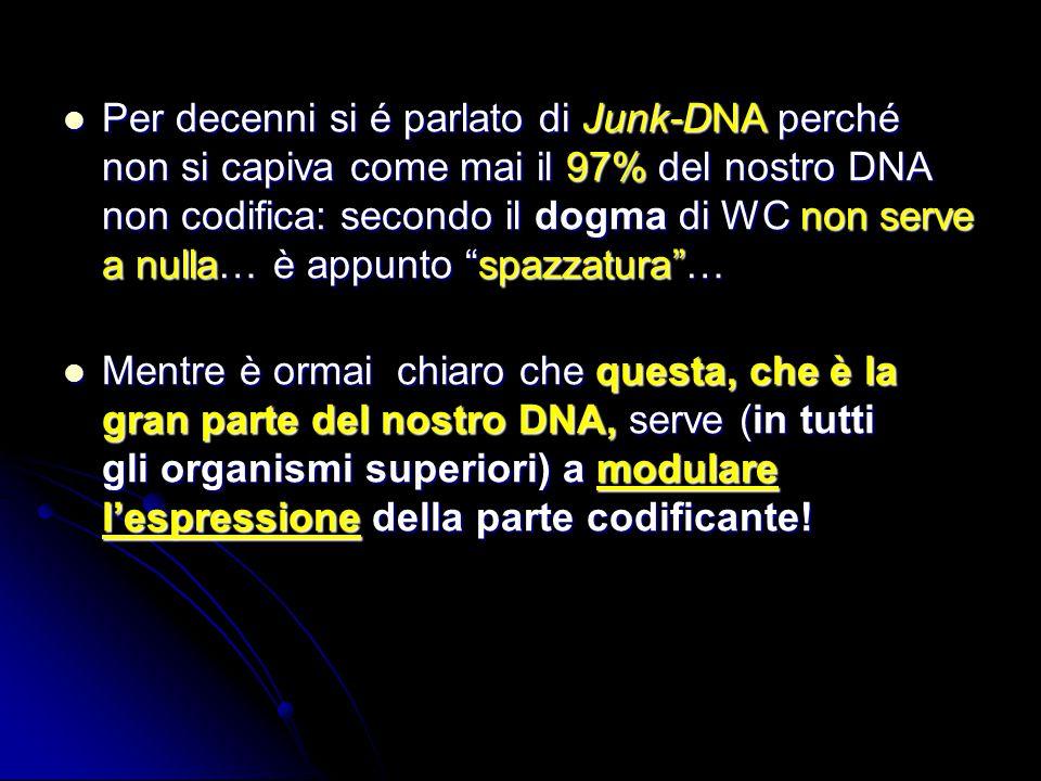 Per decenni si é parlato di Junk-DNA perché non si capiva come mai il 97% del nostro DNA non codifica: secondo il dogma di WC non serve a nulla… è app