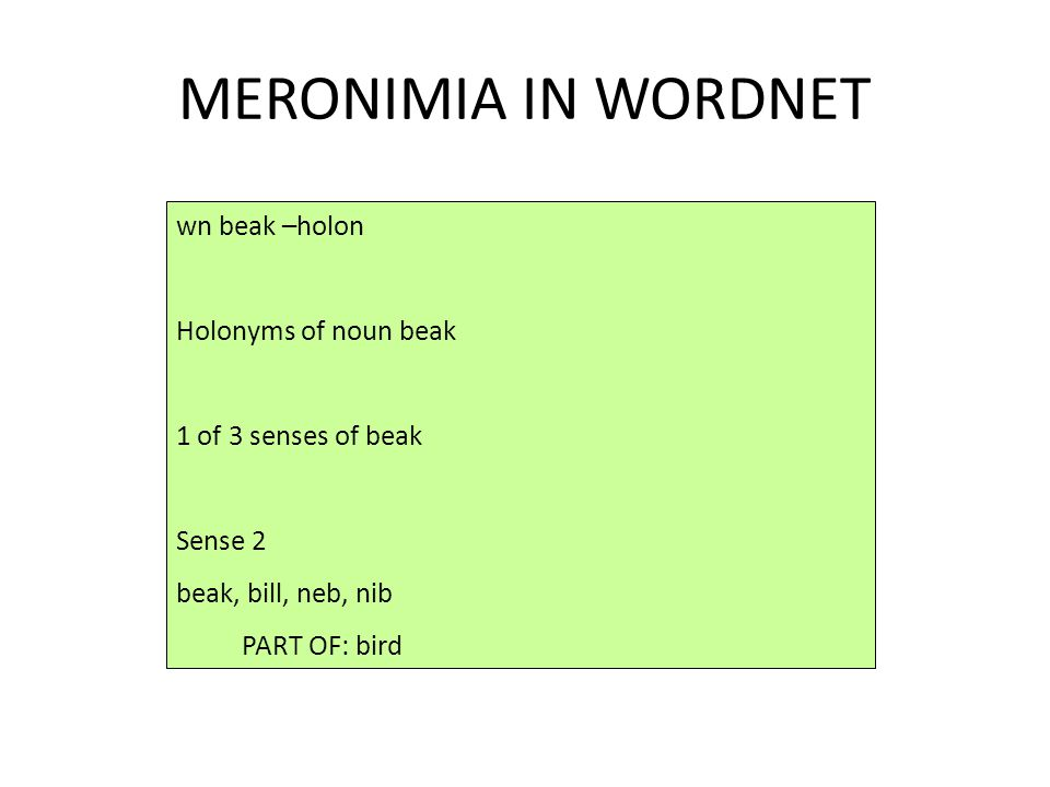 MERONIMIA IN WORDNET wn beak –holon Holonyms of noun beak 1 of 3 senses of beak Sense 2 beak, bill, neb, nib PART OF: bird