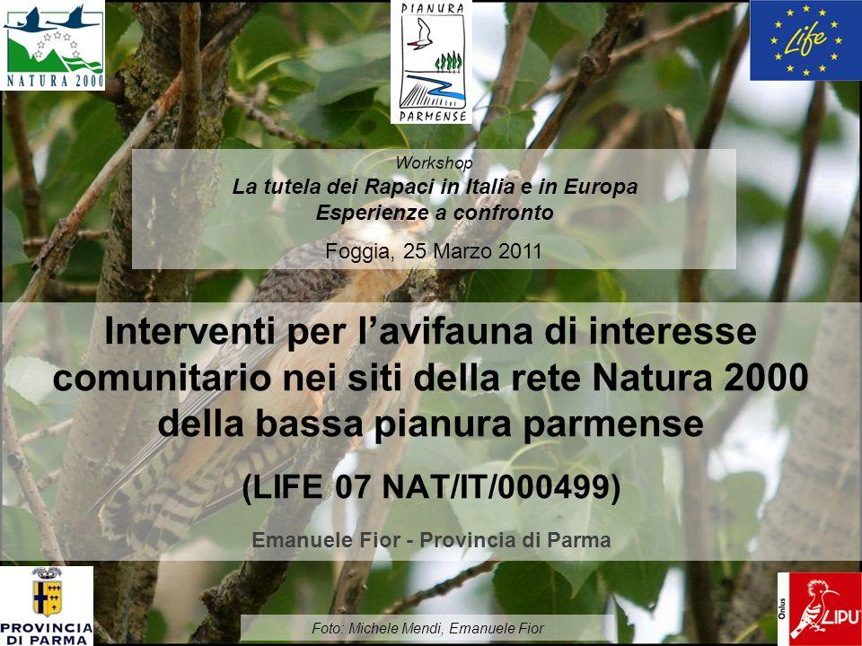 Interventi per lavifauna di interesse comunitario nei siti della rete Natura 2000 della bassa pianura parmense (LIFE 07 NAT/IT/000499) Emanuele Fior -