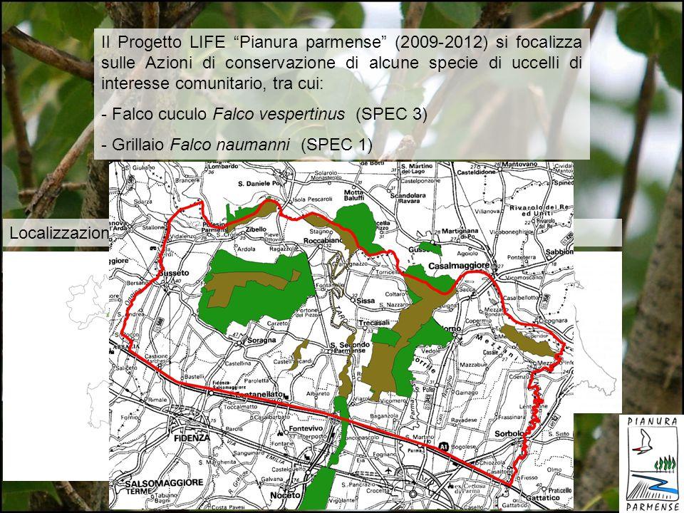 Il Progetto LIFE Pianura parmense (2009-2012) si focalizza sulle Azioni di conservazione di alcune specie di uccelli di interesse comunitario, tra cui