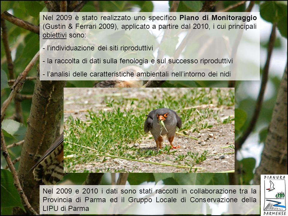 Nel 2009 è stato realizzato uno specifico Piano di Monitoraggio (Gustin & Ferrari 2009), applicato a partire dal 2010, i cui principali obiettivi sono