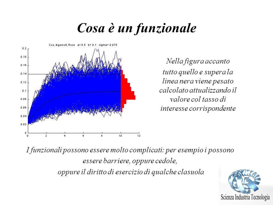 Cosa è un funzionale Nella figura accanto tutto quello e supera la linea nera viene pesato calcolato attualizzando il valore col tasso di interesse co