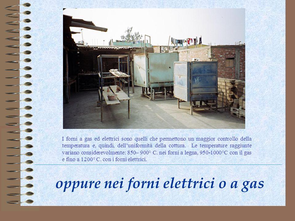 oppure nei forni elettrici o a gas I forni a gas ed elettrici sono quelli che permettono un maggior controllo della temperatura e, quindi, delluniform