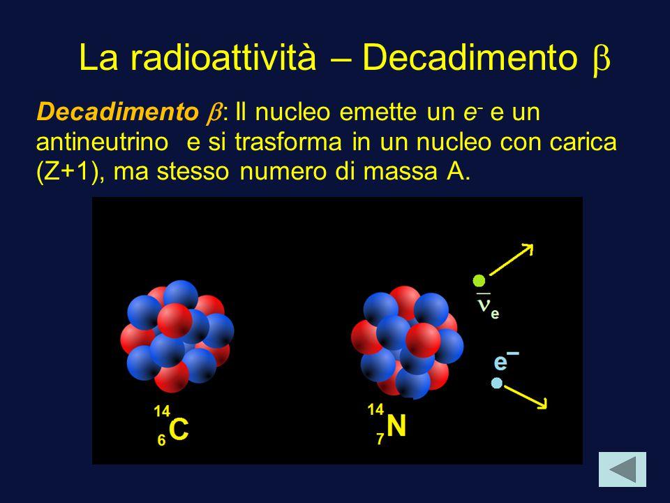 La radioattività – Decadimento Decadimento : Il nucleo emette un e - e un antineutrino e si trasforma in un nucleo con carica (Z+1), ma stesso numero di massa A.